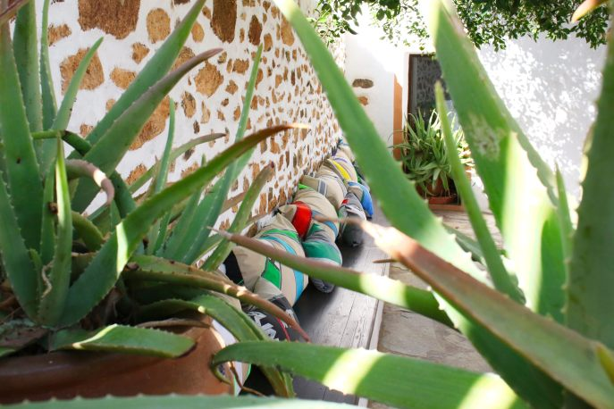 ecologic holiday fuerteventura 1