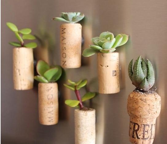 magnet cork planters