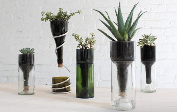 recycling glass pot cactus